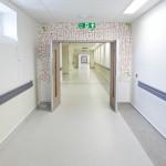 rain drops and seedlings theatre corridor