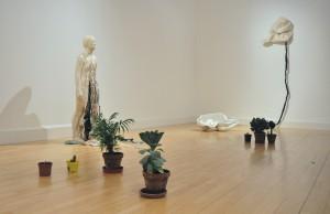 KIki and the Plants
